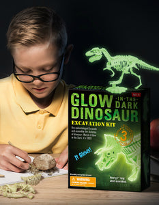 3D glow in the dark dinosaur digging toys