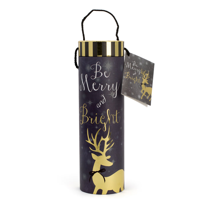 Be Merry and Bright Holiday Wine Tube - Front