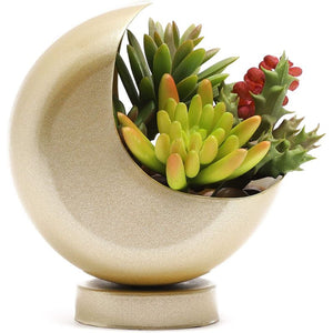 Crescent Moon Planter (Gold, Plastic)