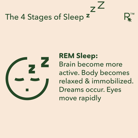 4 stages of sleep rem stage of sleep