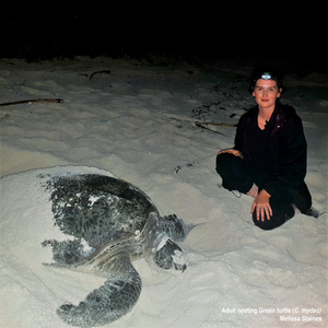 Meet Melissa who dedicates her time to researching climate change and turtles.