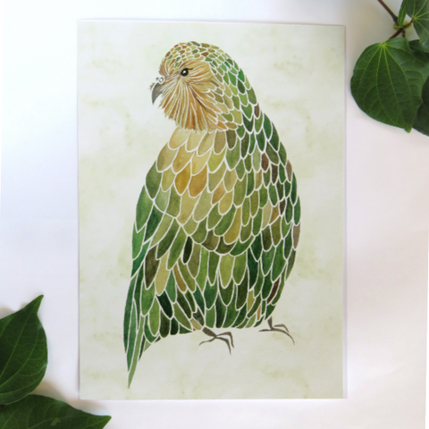 Kakapo by Tamsin Baxendale
