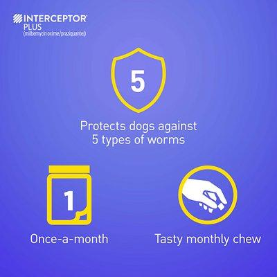 Interceptor Plus Chewable 2-8 lbs 6 treatments (Orange Box)