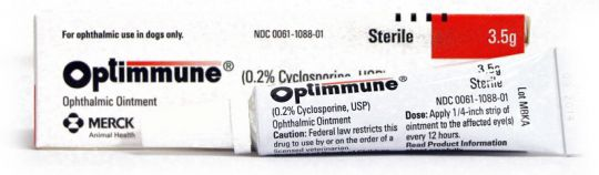 Optimmune (0.2% Cyclosporine) Ophthalmic Ointment