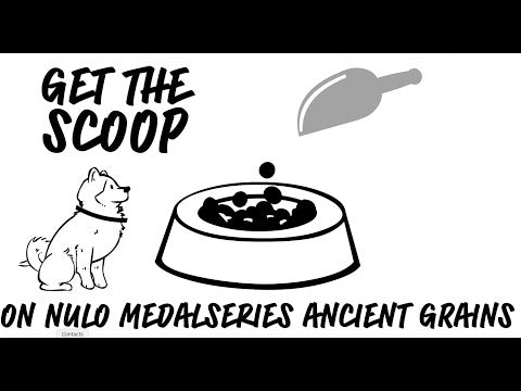 MedalSeries Ancient Grains Puppy Turkey, Oats & Guinea Fowl Recipe