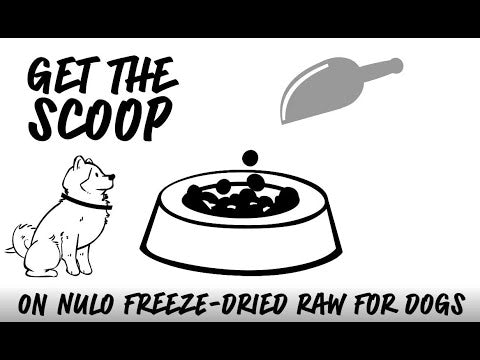 FreeStyle Freeze-Dried Raw lamb with raspberries