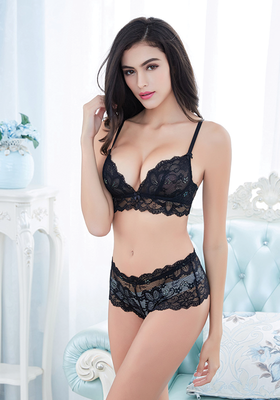 Janivah Thin Transparent Lace Bra Set