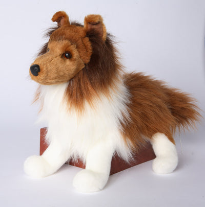 Whispy Sheltie Dog.