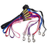5' Walking Leash w/Traffic Handle, Reflective Band & Accessory Ring