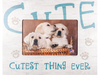 Picture Frame (Horizontal) - Cutest Thing Ever