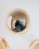 Wooden Wall Mounted Cat House