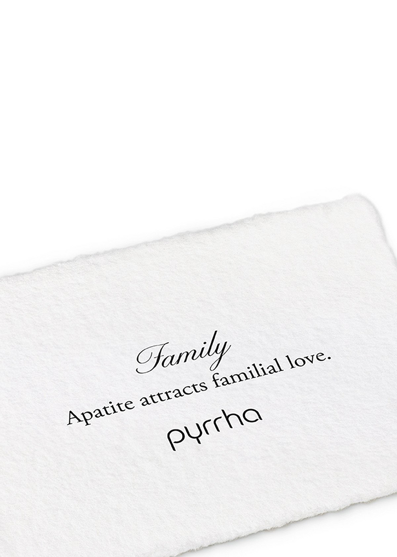Family Signature Attraction Charm