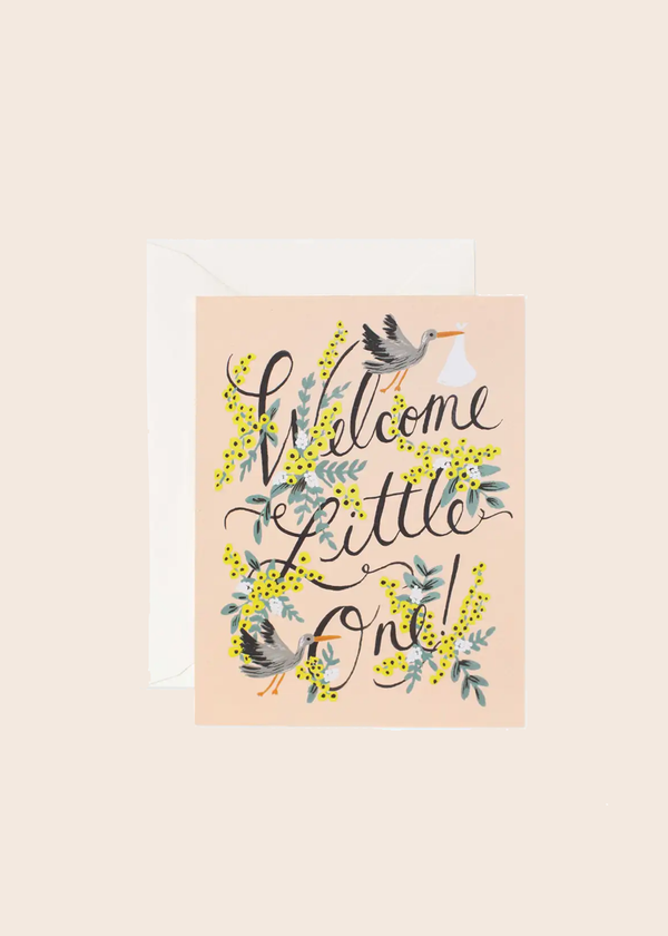 Welcome Little One Stork Card