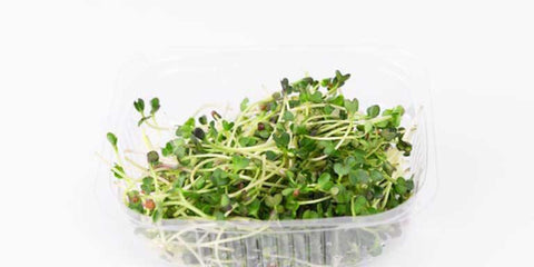 Benefits of Broccoli Sprouts - NeoGen Life Nutrition