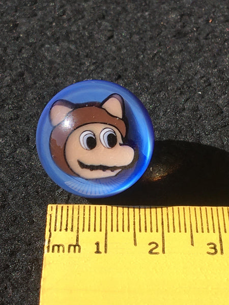 Micros Workshop - Raccoon Mario Face Blue Marble