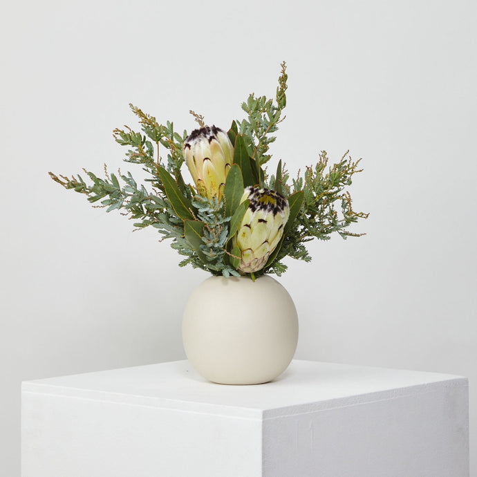 Medium Marmoset Found Vase With Native Arrangement - Cream