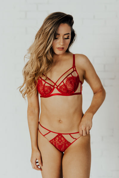 Maestra Lace Brief