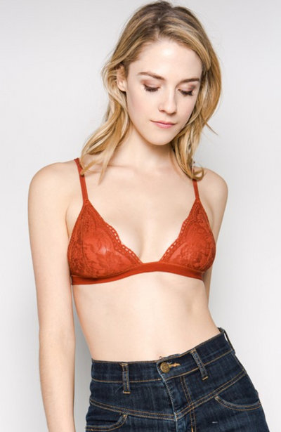 Floral Sheer Lace Triangle Bralette