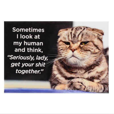 Sometimes I Look At My Human And Think Seriously Lady Get Your Shit Together Fridge Magnet