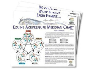 Equine 5-Element Chart Set
