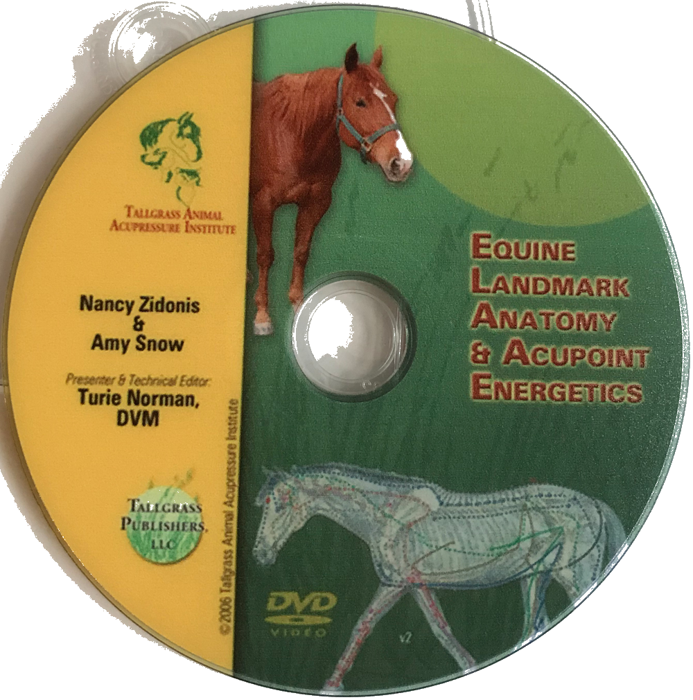 Equine Acupoint Energetics & Landmark Anatomy DVD