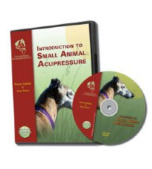 Introduction to Small Animal Acupressure DVD