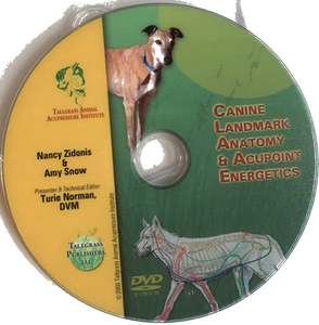 Canine Acupoint Energetics & Landmark Anatomy DVD