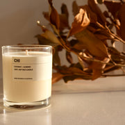 Posie candle CHI - Coconut / Almond 300g - simplebeautifulthings