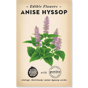 The_Little_Veggie_Patch_Co_Anise_Hyssop_Simple_Beautiful_Things