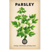 The_Little_Veggie_Patch_Co_Parsley_Simple_Beautiful_Things