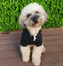 Load image into Gallery viewer, Diamond in the ruff dog hoodie