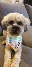 Load image into Gallery viewer, Custom Name Bandanas - Rainbow