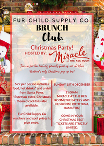 FSCS Brunch Club Christmas Party