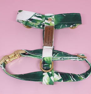 Waikiki Adjustable Strap Harness - Palm