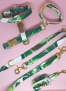 Waikiki Adjustable Collar - Palm