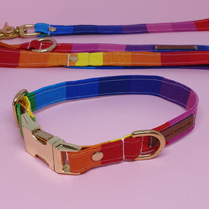 San Francisco Adjustable Collar - Rainbow Canvas