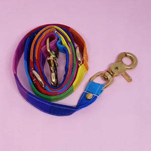 San Francisco Adjustable Dog Leash -  Rainbow