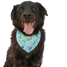 Load image into Gallery viewer, Pawty Bandanas - Canvas