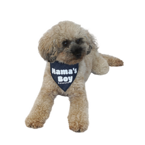 Mama's Boy Bandanas - Denim