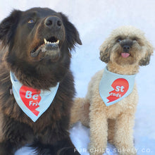 Load image into Gallery viewer, Best Friends Bandanas - Denim