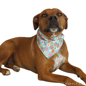 Brunch Bandanas - Canvas