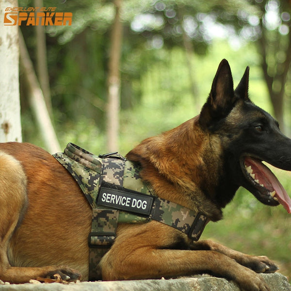 Dogs Outdoor Tactical Vest