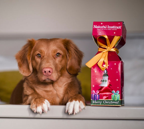 Natural Instinct Christmas Cracker For Dogs