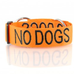 Dexil Friendly Dog Collars Collar - No Dogs