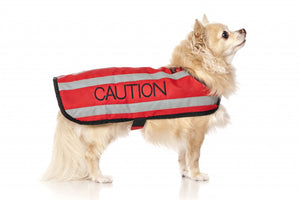 Dexil Friendly Dog Collars Coat - Caution