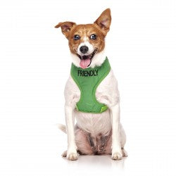 Dexil Friendly Dog Collars Vest Harness - Friendly