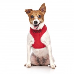 Dexil Friendly Dog Collars Vest Harness - Caution