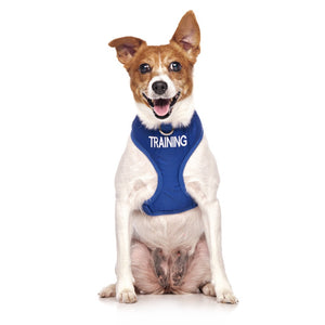 Dexil Friendly Dog Collars Vest Harness - Training