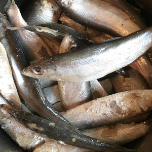 Nutriment Whole Frozen Sprats