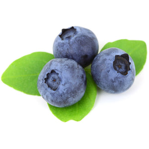Otway Pesticide Free Blueberries FRESH 125g